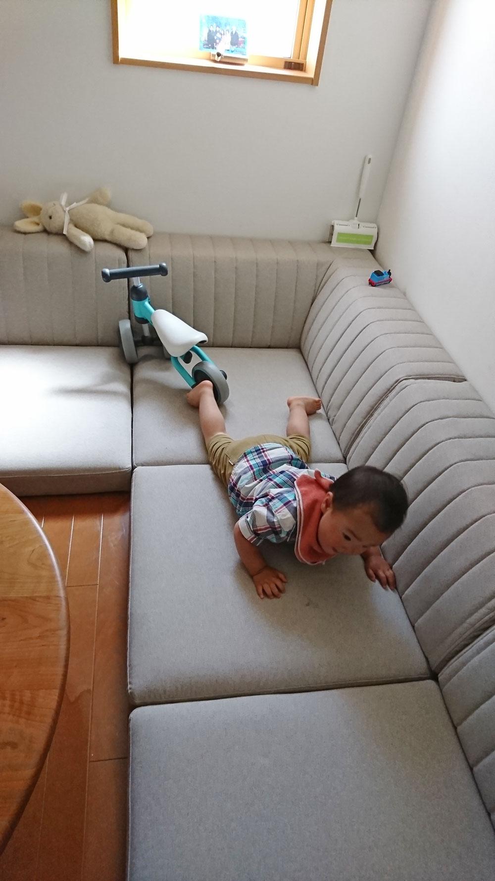 ラムースで、ペットにも赤ちゃんにもやさしいソファ【国産ローソファ・フロアソファ専門店HAREM】