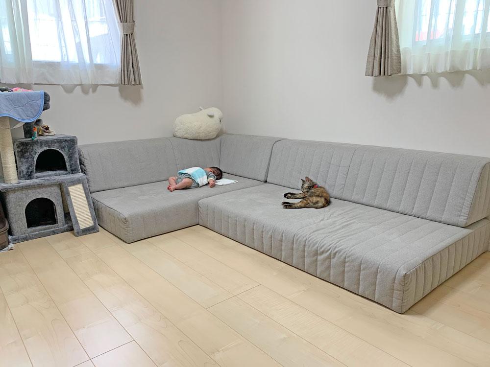 赤ちゃんと猫ちゃん、つみきソファでころんとお昼寝【国産ローソファ・フロアソファ専門店HAREM】