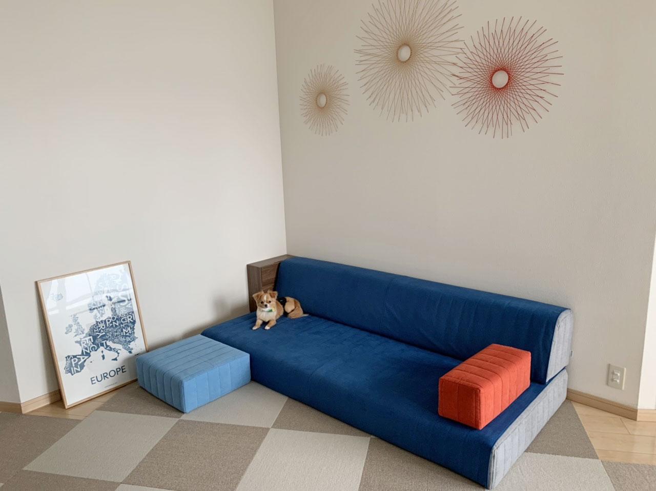 背の低いソファで、小型犬との暮らしも安心。【国産ローソファ・フロアソファ専門店HAREM】